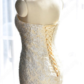 Strapless Sweetheart Lace Appliqué..